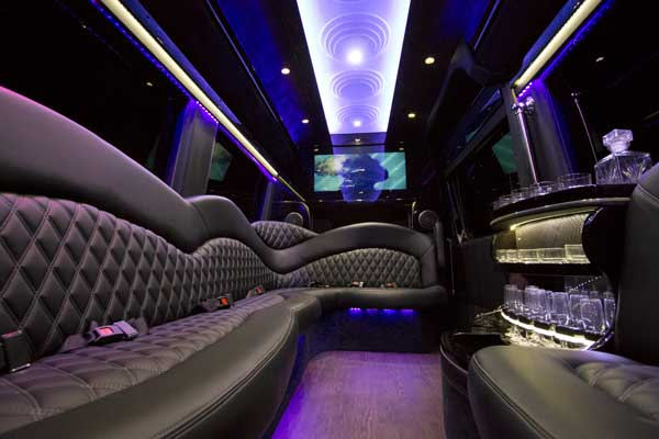 Mercedes Sprinter Party Bus Interior
